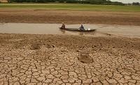 Roraima elabora plano contra seca.