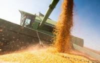 Ministério da Agricultura lança Observatório da Agropecuária Brasileira