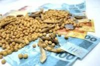 Chicago sobe, mas dólar em queda prejudica vendas da soja no Brasil