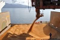 Exportações do agro do Brasil somam US$11,3 bi em julho com valorização de commodities