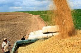 Agronegócio representa um terço das exportações brasileiras no primeiro trimestre.