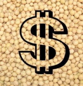 Em Chicago, mercado da soja parece retomar o fôlego e tem altas de dois dígitos nesta 6ª feira.
