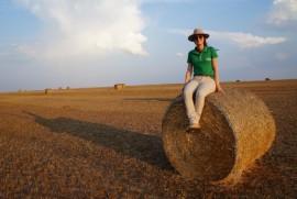 Mulheres no campo